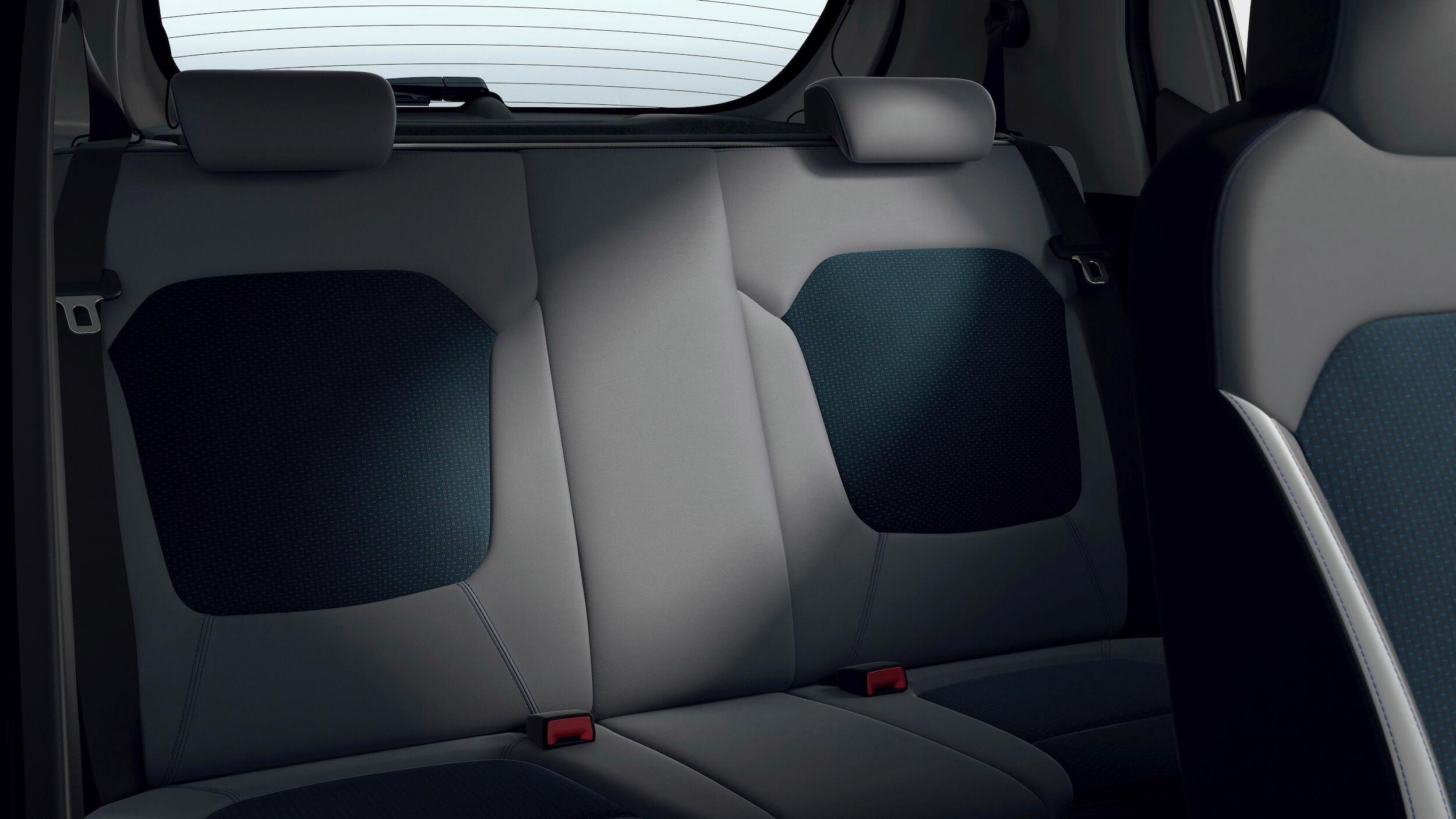 Dacia Spring 10